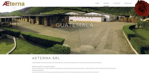 aeterna.it